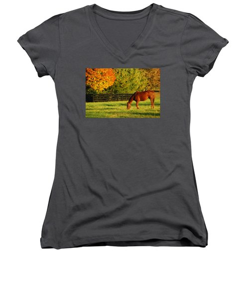 Autumn Grazing Women's V-Neck T-Shirt (Junior Cut) by James Kirkikis