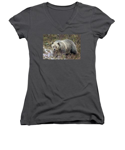 Women's V-Neck T-Shirt (Junior Cut) featuring the photograph Autumn Grizzly by Jack Bell