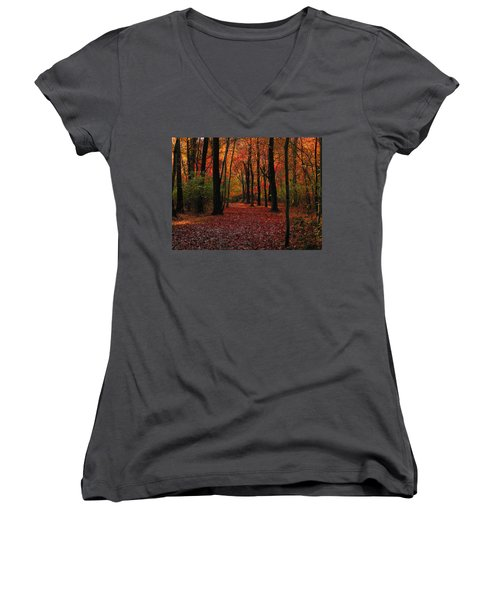 Autumn IIi Women's V-Neck T-Shirt