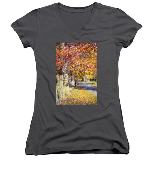 Autumn In Hyde Park Women's V-Neck T-Shirt (Junior Cut) by Joan Carroll