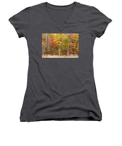 Autumn In Muskoka Women's V-Neck (Athletic Fit)