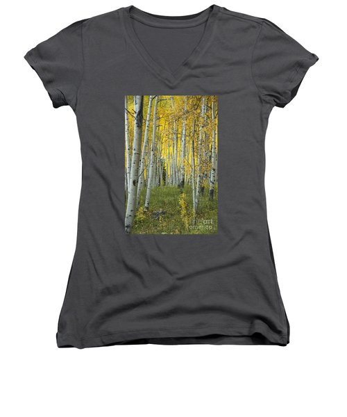 Autumn In The Aspen Grove Women's V-Neck T-Shirt (Junior Cut) by Juli Scalzi