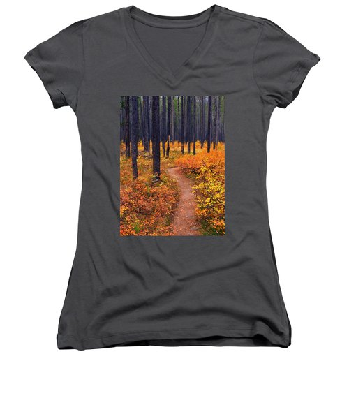 Women's V-Neck T-Shirt (Junior Cut) featuring the photograph Autumn In Yellowstone by Raymond Salani III