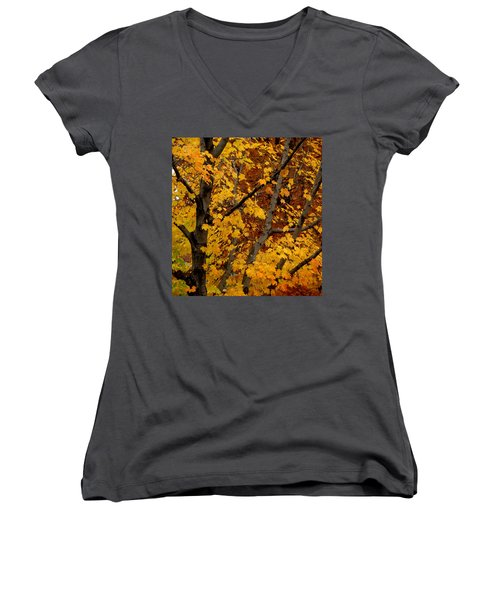 Autumn Moods 21 Women's V-Neck (Athletic Fit)