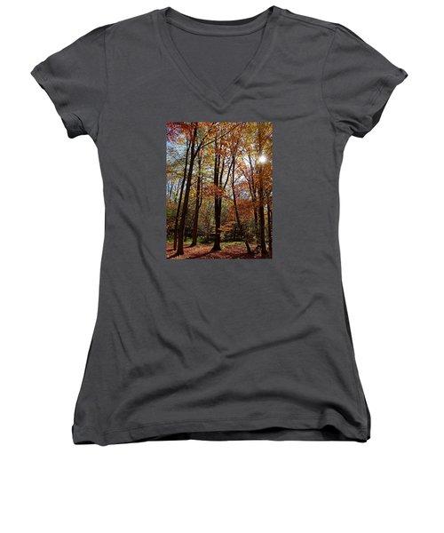 Autumn Picnic Women's V-Neck T-Shirt (Junior Cut) by Debbie Oppermann