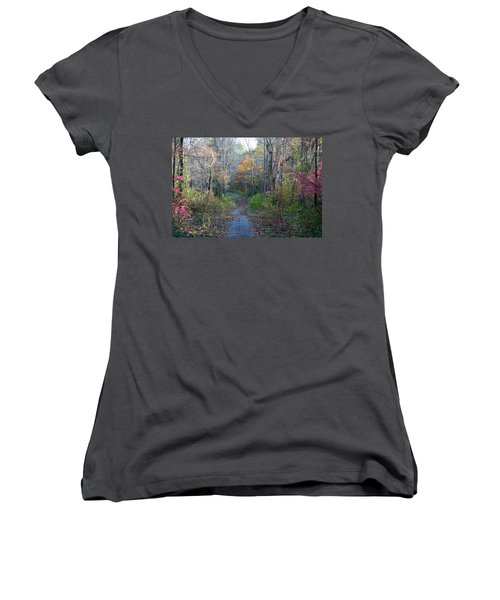Autumn Silence No.2 Women's V-Neck T-Shirt (Junior Cut) by Neal Eslinger