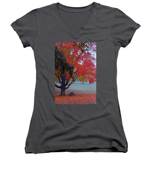 Autumn Splendor Women's V-Neck (Athletic Fit)