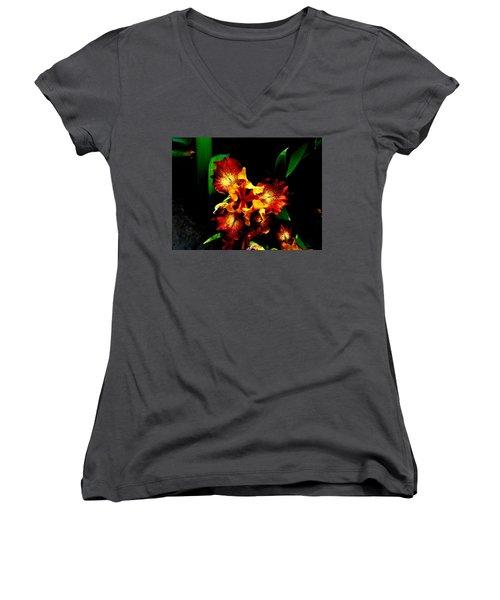 Awesome Iris Women's V-Neck T-Shirt