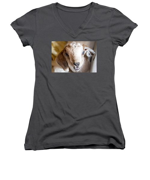 Baby Goat Face Women's V-Neck (Athletic Fit)
