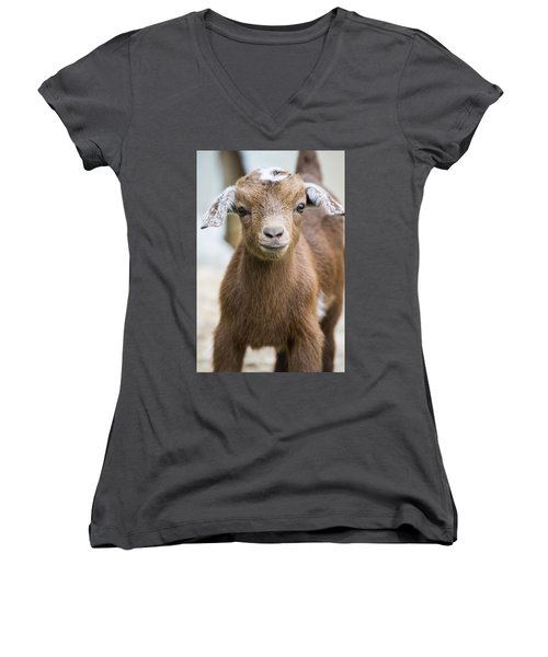 Baby Goat Women's V-Neck T-Shirt (Junior Cut) by Shelby  Young