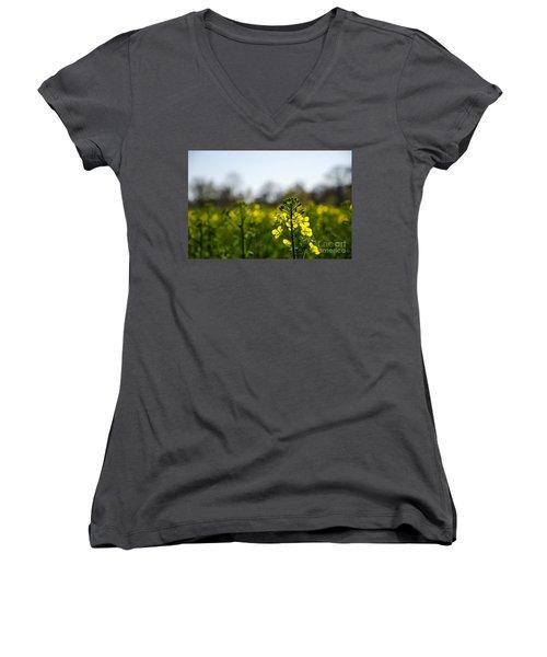 Women's V-Neck T-Shirt (Junior Cut) featuring the photograph Backlit Canola Flower by Kennerth and Birgitta Kullman