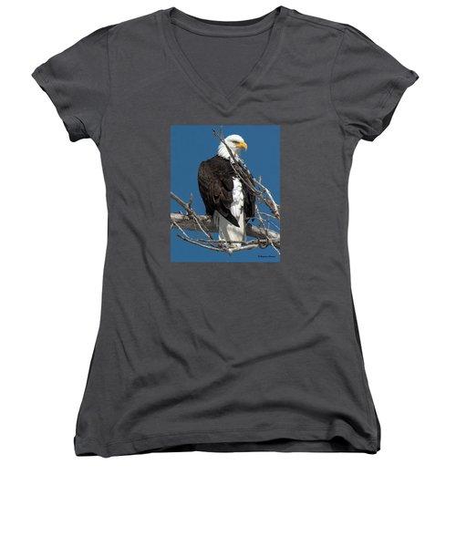 Bald Eagle Putting On The Ritz Women's V-Neck T-Shirt (Junior Cut) by Stephen  Johnson