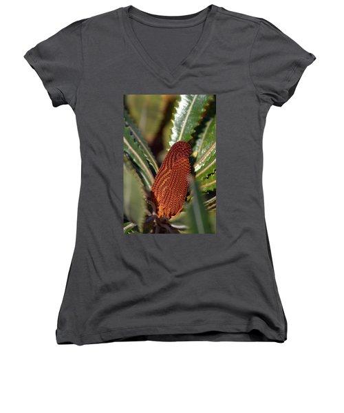 Women's V-Neck T-Shirt (Junior Cut) featuring the photograph Banksia by Miroslava Jurcik