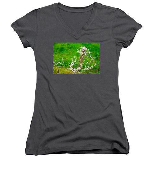 Barbs And Briers Women's V-Neck