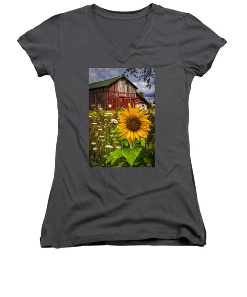 Barn Meadow Flowers Women's V-Neck (Athletic Fit)