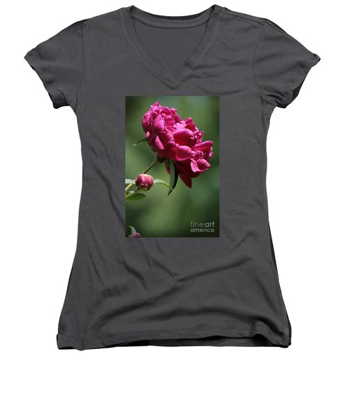 Basking In The Sun Women's V-Neck T-Shirt (Junior Cut) by Barbara Bardzik