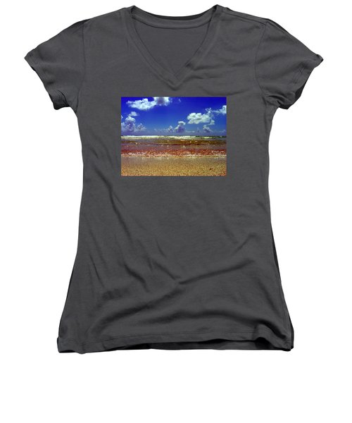 Beach Women's V-Neck T-Shirt (Junior Cut) by J Anthony