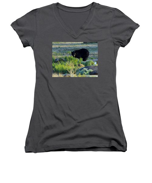 Bear 3 Women's V-Neck (Athletic Fit)