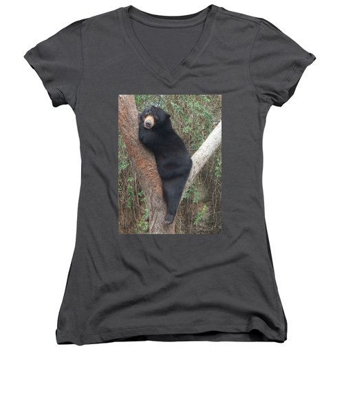 Bear In Tree   Women's V-Neck T-Shirt (Junior Cut)
