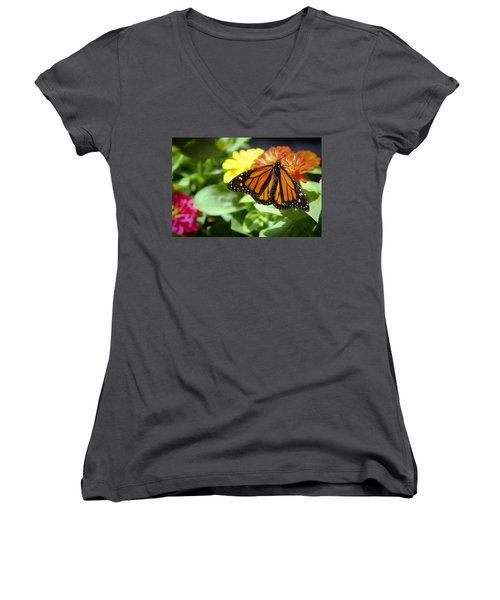 Beautiful Monarch Butterfly Women's V-Neck T-Shirt