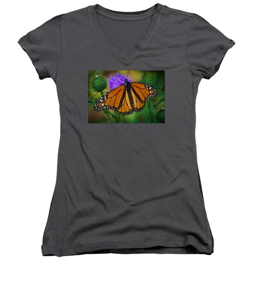 Beautifully Aged Women's V-Neck T-Shirt