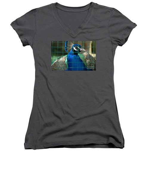 Women's V-Neck T-Shirt (Junior Cut) featuring the photograph Beauty In Captivity by Randi Grace Nilsberg