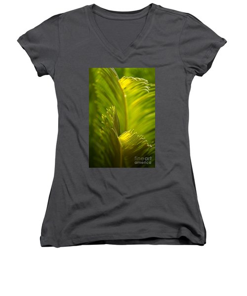 Beauty In The Sunlight Women's V-Neck T-Shirt