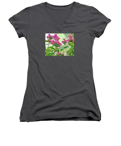 Bee Balm Women's V-Neck T-Shirt