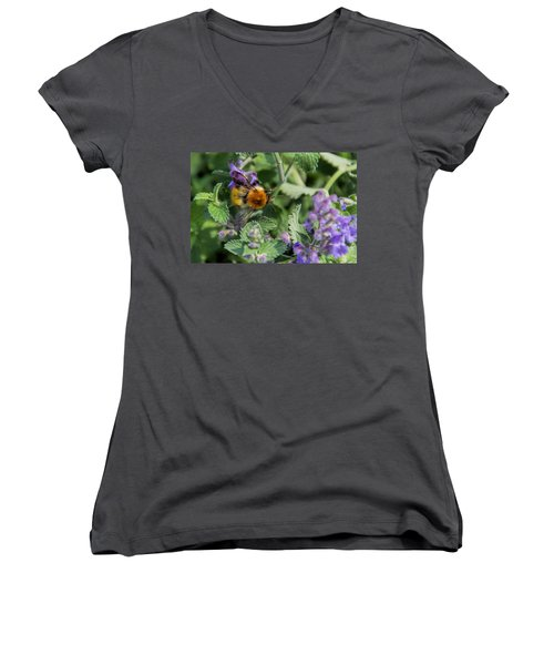 Women's V-Neck T-Shirt (Junior Cut) featuring the photograph Bee Too by David Gleeson