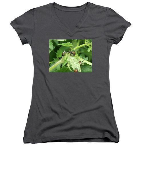 Women's V-Neck T-Shirt (Junior Cut) featuring the photograph Beetle Posse by Thomas Woolworth