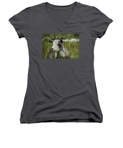 Betsy Women's V-Neck (Athletic Fit)