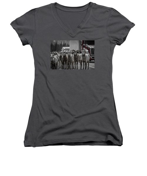 Women's V-Neck featuring the photograph Big Horn Sheep Road Block by Roxy Hurtubise