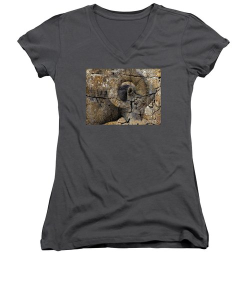 Bighorn Rock Art Women's V-Neck T-Shirt