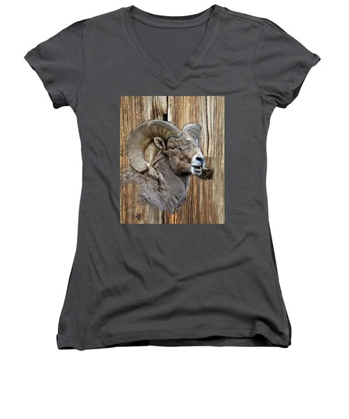 Bighorn Sheep Barnwood Women's V-Neck T-Shirt