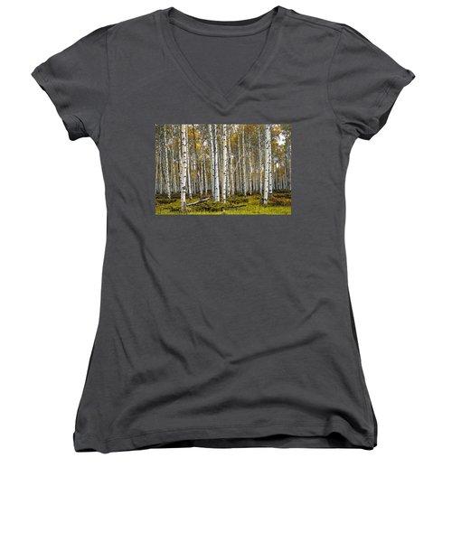 Aspen Trees In Autumn Women's V-Neck