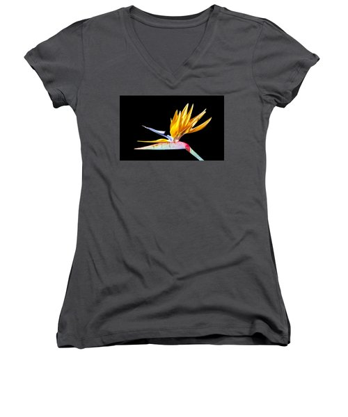 Bird Of Paradise Flower Women's V-Neck T-Shirt (Junior Cut) by Lynn Bolt