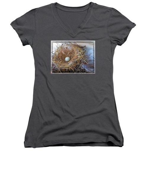 Birds Nest - Perfect Home Women's V-Neck T-Shirt (Junior Cut)