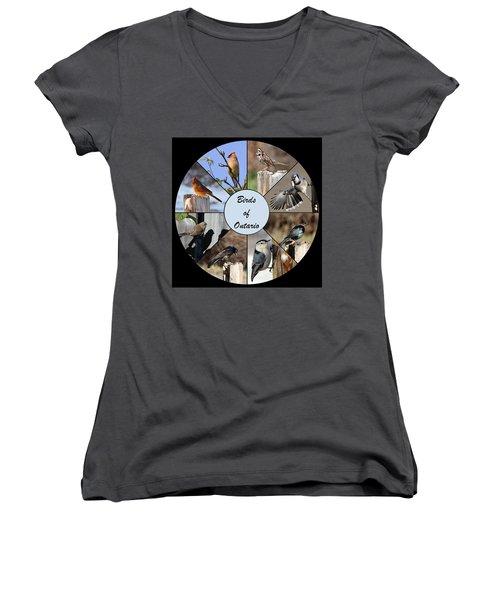 Birds Of Ontario Women's V-Neck T-Shirt