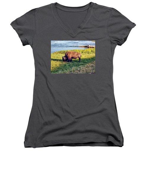 Women's V-Neck T-Shirt (Junior Cut) featuring the photograph Bison 4 by Dawn Eshelman