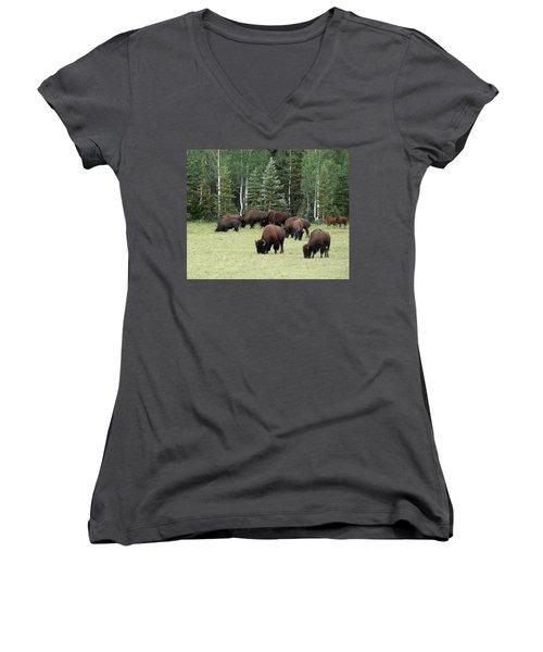 Bison At North Rim Women's V-Neck T-Shirt