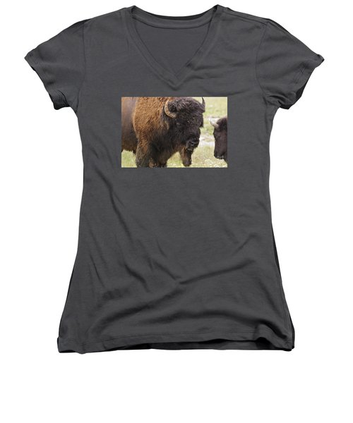Women's V-Neck T-Shirt (Junior Cut) featuring the photograph Bison From Yellowstone by Belinda Greb