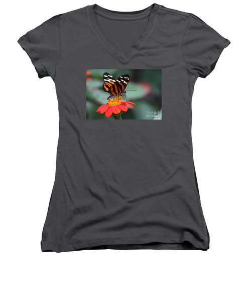 Black And Brown Butterfly On A Red Flower Women's V-Neck