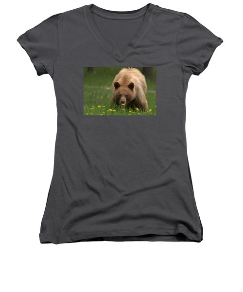 Black Bear Women's V-Neck