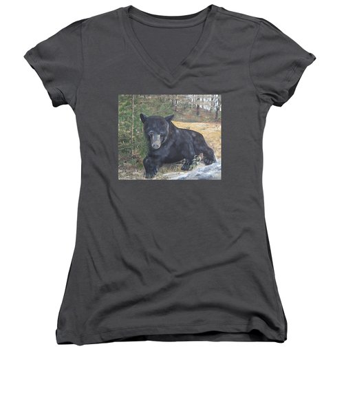 Black Bear - Wildlife Art -scruffy Women's V-Neck T-Shirt