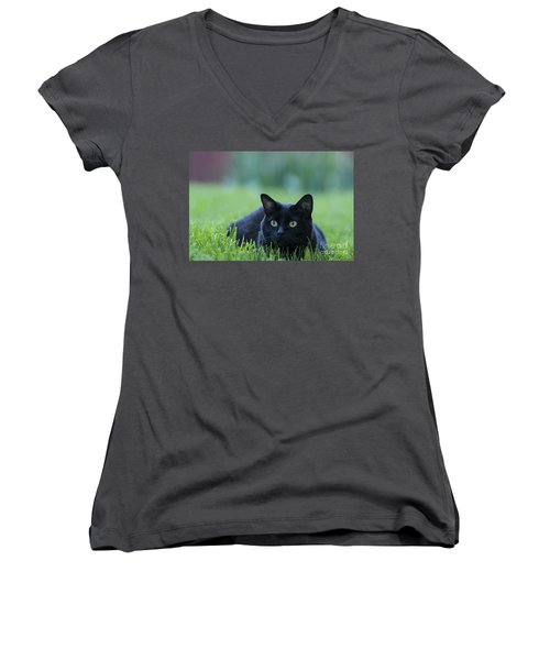 Black Cat Women's V-Neck T-Shirt (Junior Cut) by Juli Scalzi