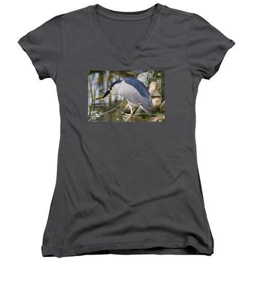 Black-crown Heron Going Fishing Women's V-Neck T-Shirt (Junior Cut) by David Millenheft