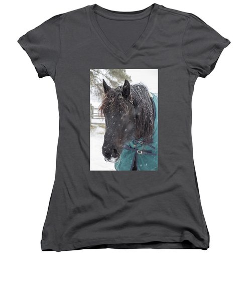 Black Horse In Snow Women's V-Neck T-Shirt