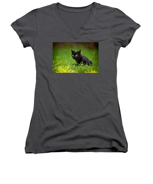 Black Kitten Women's V-Neck