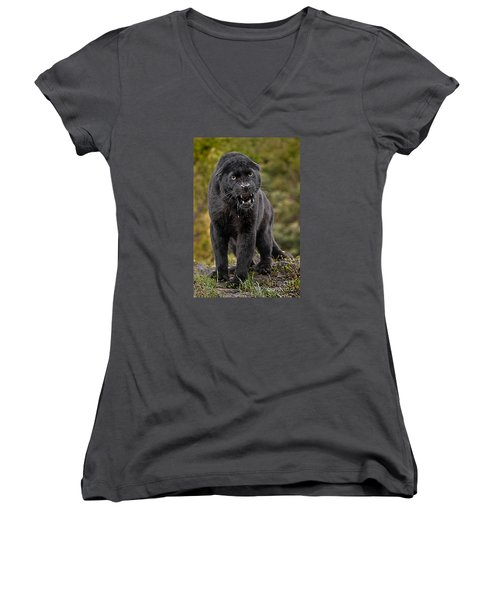 Black Panther Women's V-Neck T-Shirt (Junior Cut) by Jerry Fornarotto