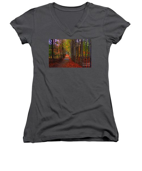 Blanket Of Red Leaves Women's V-Neck T-Shirt